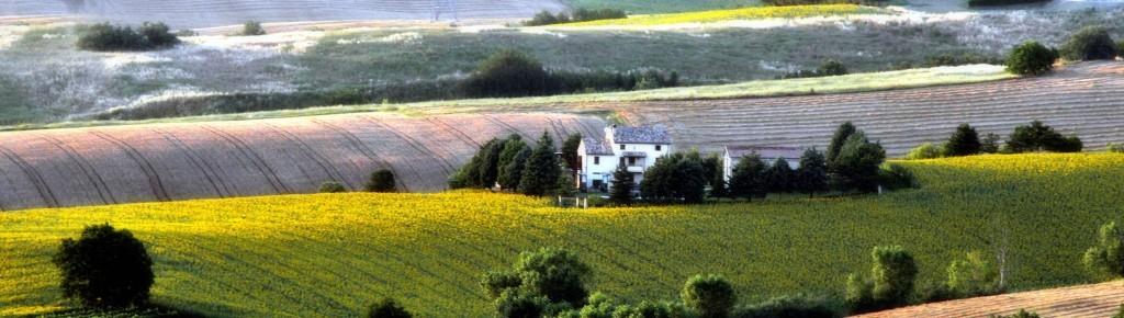 25 febbraio 2016 Fondi UE 2014-2020 per l'Agricoltura